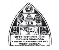 bckv logo